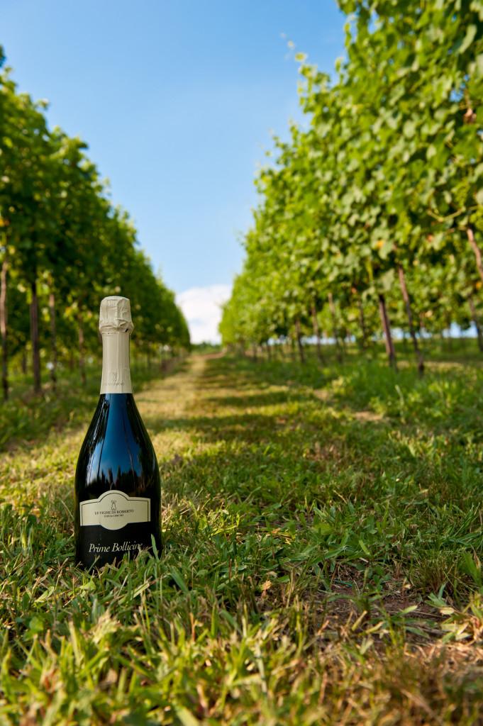 Le vigne di Roberto vicino a Breganze